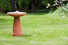 Bird bath. A modern terra cotta bird bath in a nicely landscaped yard Royalty Free Stock Photos