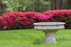 Bird Bath. In the Front with Red Azaleas in the Background royalty free stock images