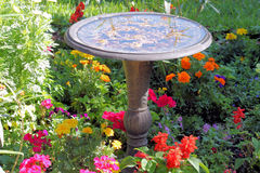 Bird Bath. A bird bath sitting in a meadow of flowers Stock Image