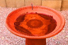 Bird bath. Pottery clay bird bath with water Stock Images