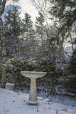 Bird Bath. After a snowstorm Royalty Free Stock Photo