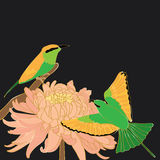 Bird bee-eater chrysanthemum Royalty Free Stock Photo