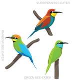 Bird Bee Eater Set Cartoon Vector Illustration Royalty Free Stock Photos