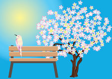 Bird, benches and flowering trees. Stock Photos