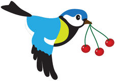 Bird with berries Stock Photography