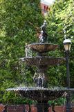 Bird in the birdbath. Bird sitting in a beautiful three tiered birdbath in garden courtyard Stock Photos