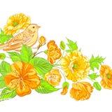 Bird on blossoming sakura brunch. Royalty Free Stock Images