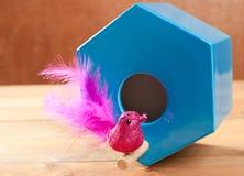Bird in blue nest house polygonal shape Stock Photography