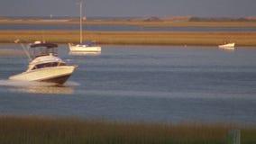 Bird and Boat Marshland stock video footage