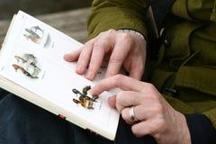 Bird book Stock Images