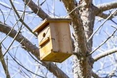 Bird-box.Bird dom na drzewie w lat drewnach zdjęcia stock