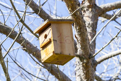 Bird-box.Bird house on the tree  in the summer woods Stock Photos
