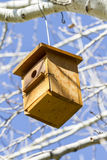 Bird-box.Bird house on the tree  in the summer woods Royalty Free Stock Image