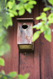 Bird box on red wooden wall Royalty Free Stock Images