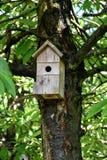 Bird box. A wooden birdhouse hanging tn a tree Stock Image
