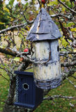 Bird boxes Stock Images