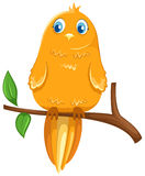 Bird on branch. Illustration of isolated a cute bird on branch on white background stock illustration