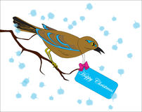 Bird on a branch with a greeting card Royalty Free Stock Photo