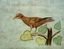 Bird on a branch. Pencil sketch on the old paper. Stock Photography