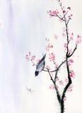 Bird on a branch of sakura Royalty Free Stock Image