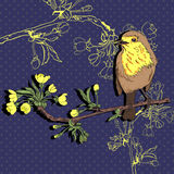 Bird on the branch. Vector illustration. Vector illustration of a robin that sits on a branch of cherry that blooms Royalty Free Stock Photography