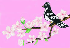 Bird on branch with white flowers on pink background Stock Photography