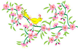 Bird on branch Stock Photos