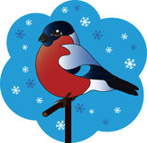 Bird bullfinch on a branch. Bullfinch bird sitting on a branch on a blue background with snowflakes stock illustration