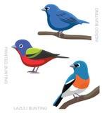 Bird Bunting Set Cartoon Vector Illustration Stock Photo