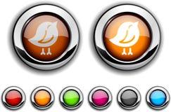 Bird button. Bird realistic buttons. Set of illustration Stock Photos