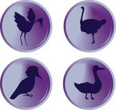Bird buttons Royalty Free Stock Photography