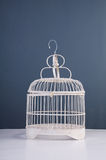 Bird cage. Still life shoot of bird cage stock photo