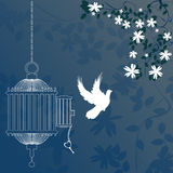 Bird and cage. With cherry blossom tree stock illustration