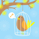 Bird in a cage. A lonely bird is trapped in  cage, wishing for the key to it's freedom Stock Photos
