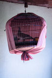 Bird Cage Royalty Free Stock Image