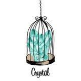 Bird cage Stock Photos