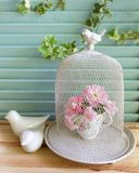 Bird cage and pink roses Stock Photography