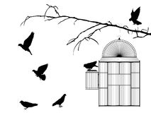 Bird cage. Silhouette over white background Royalty Free Stock Photos