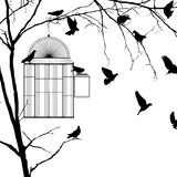 Bird cage silhouettes. Bird cage silhouette over white background Stock Images