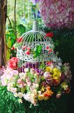 Bird cage with spring blossom and fruit flowers Wedding Royalty Free Stock Photos