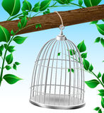 Bird cage on a tree branch Royalty Free Stock Photography