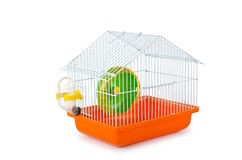 Bird cage  on the white Stock Images