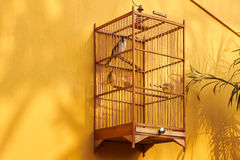 Bird cage on yellow wall Royalty Free Stock Photography