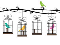 Bird cages Stock Images