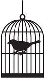 Bird cages. Silhouette bird cages, black cage Stock Photo