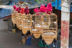 Bird cages for sale in Hanoi street.  Stock Photography