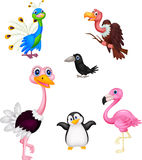 Bird cartoon collection Royalty Free Stock Image