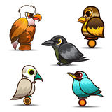 Bird cartoon set collection Royalty Free Stock Photo