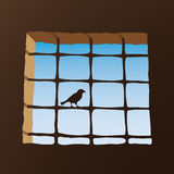 Bird on cell window Royalty Free Stock Images
