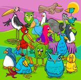 Bird characters group cartoon illustration Stock Image